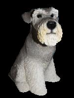 Deko Figur Hund Mittelschnauzer Hundefigur Schnauzer sitzend Kollektion Castagna aus Resin H 32 cm