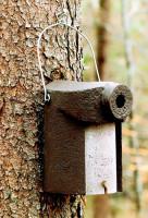 Naturschutzprodukt Nistkästen Vogelhöhle Typ 3SV oval Flugloch 32 x 45 mm Satz 2 Stück