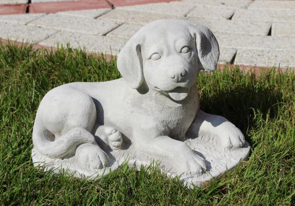 Beton Figur Hund Labrador Retriever Welpe liegend H 17 cm Dekofigur und Gartenfigur