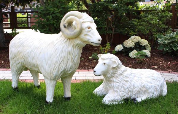 Dekorationsfiguren Schafbock und Schaf lebensgroß H 40/72 cm Gartenfiguren Gartendeko aus Kunstharz