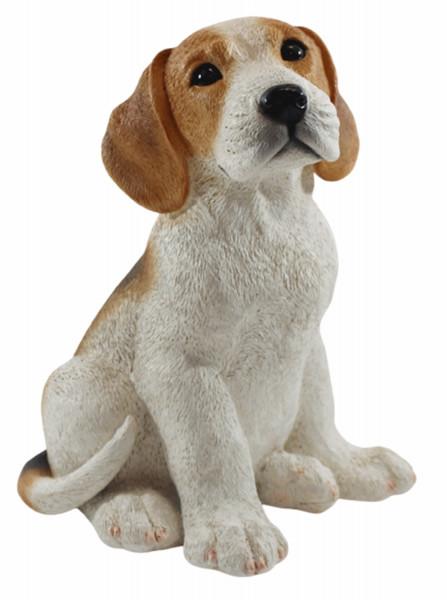 Deko Figur Hund britischer Beagle Welpe Hundefigur sitzend Kollektion Castagna aus Resin H 24 cm