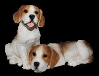 Deko Figur Hund britische Beagle Welpen Hundefigur Hundewelpen Kollektion Castagna aus Resin H 20 cm