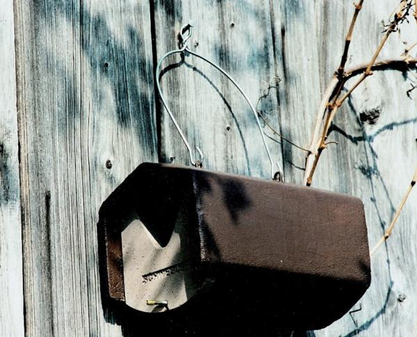 Naturschutzprodukt Halbhöhle Typ 2HW räubersicher