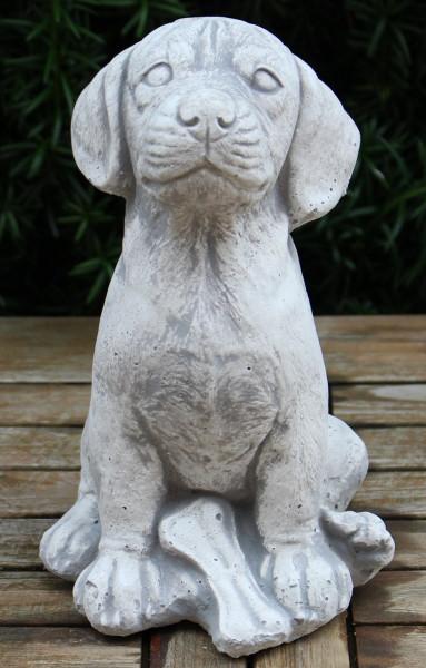 Beton Figur Hund Rottweiler Welpe sitzend Knochen an vorderen Pfoten H 24 cm Dekofigur Gartenfigur
