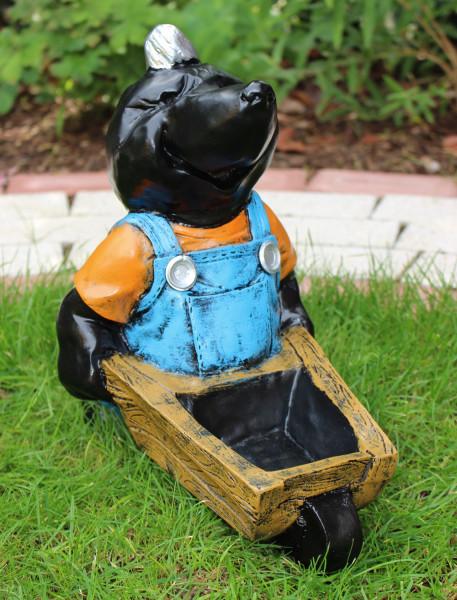 Dekorationsfigur Maulwurf H 32 cm stehend mit Schubkarren Gartenfigur aus Kunstharz