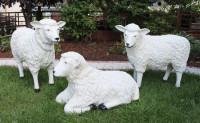 Dekorationsfiguren Schafe lebensgroß H 40-64 cm Gartenfiguren Gartendeko Deko Figur aus Kunstharz