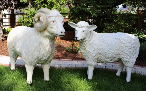 Dekorationsfiguren Schafbock und Schaf lebensgroß H 60/72 cm Gartenfiguren Gartendeko aus Kunstharz