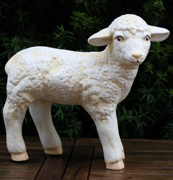 Deko Figur Lamm stehend Kopf gerade H 26 cm Lämmchen Tierfigur Lämmlein Gartenfigur aus Kunstharz