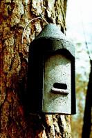 Naturschutzprodukt Fledermaushöhle 2F universell