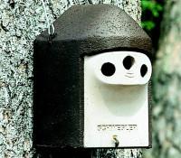 Naturschutzprodukt Nisthöhle Typ 2GR Dreiloch je 27 mm
