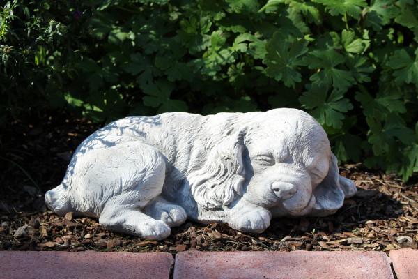 Beton Figur Hund Cocker Spaniel Welpe L 33 cm Hundefigur liegend und schlafend Gartenfigur