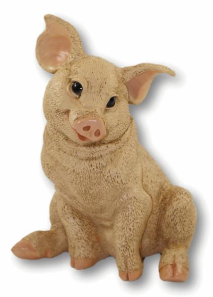 Dekofigur Tierfigur Schwein Ferkel Schweinchen sitzend natur Kollektion Castagna aus Resin H 22 cm