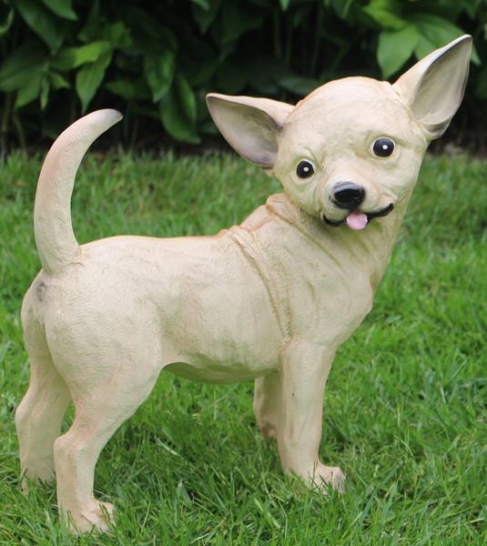 Dekorationsfigur Hund Chihuahua Höhe 29 cm Deko Figur aus Kunstharz
