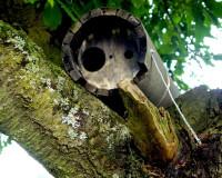 Naturschutzprodukt Steinkauzröhre Typ 20B mit Marderschutz und Belüftung