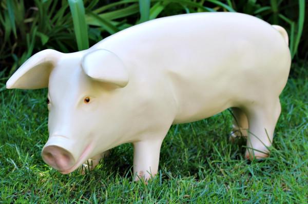 Dekorationsfigur Tierfigur Schwein Ferkel stehend links H 26 cm Dekofigur aus Kunstharz