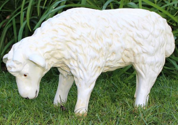 Dekorationsfigur Gartenfigur Schaf Lamm stehend und grasend H 34 cm Gartenfigur aus Kunstharz